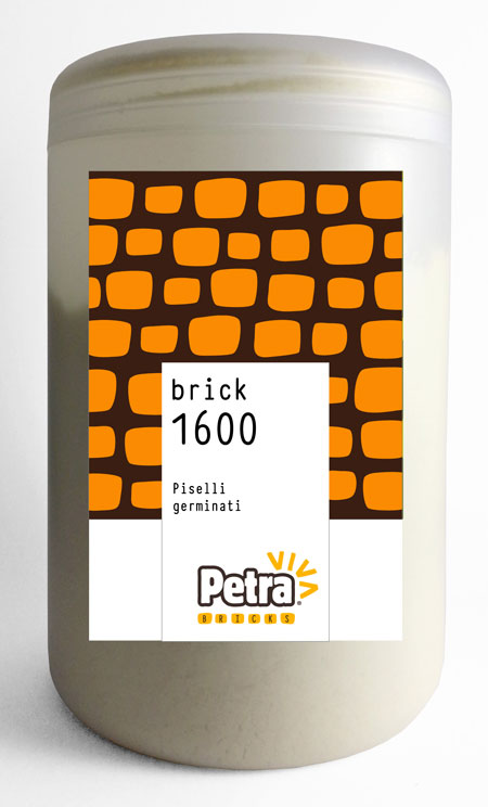 Petra 1600