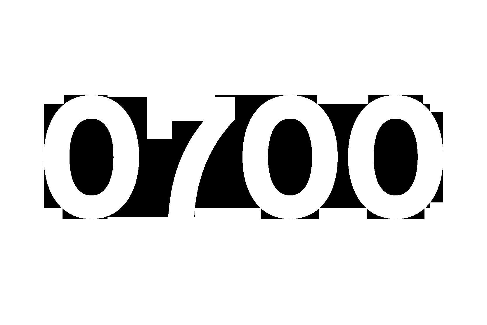 Numeri-17