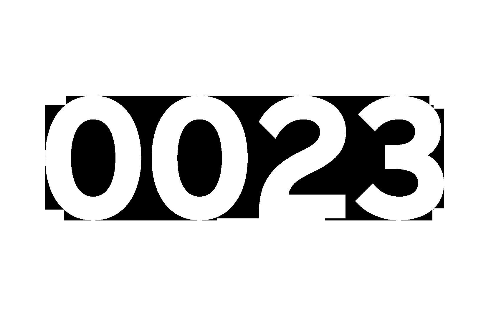 Numeri-19